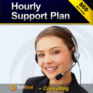 Hourly Support
